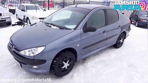 Peugeot B2 2007 206